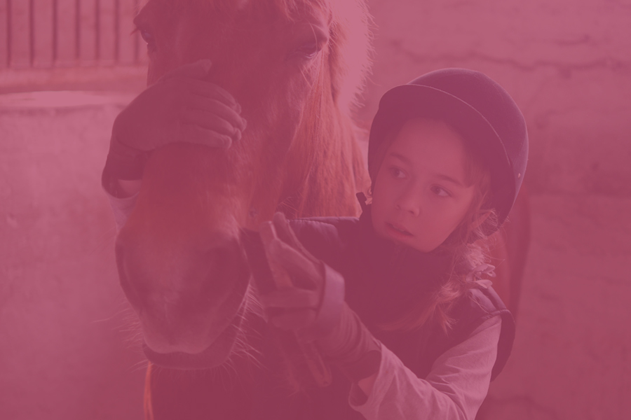Horse-Care-Courses-900x600-pink