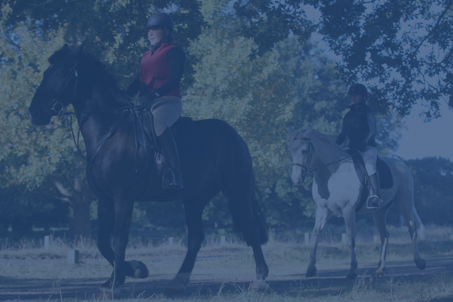 Horse-Riding-for-adults-900x600-blue