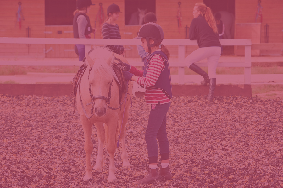 Pony-Club-900x600-new-pink