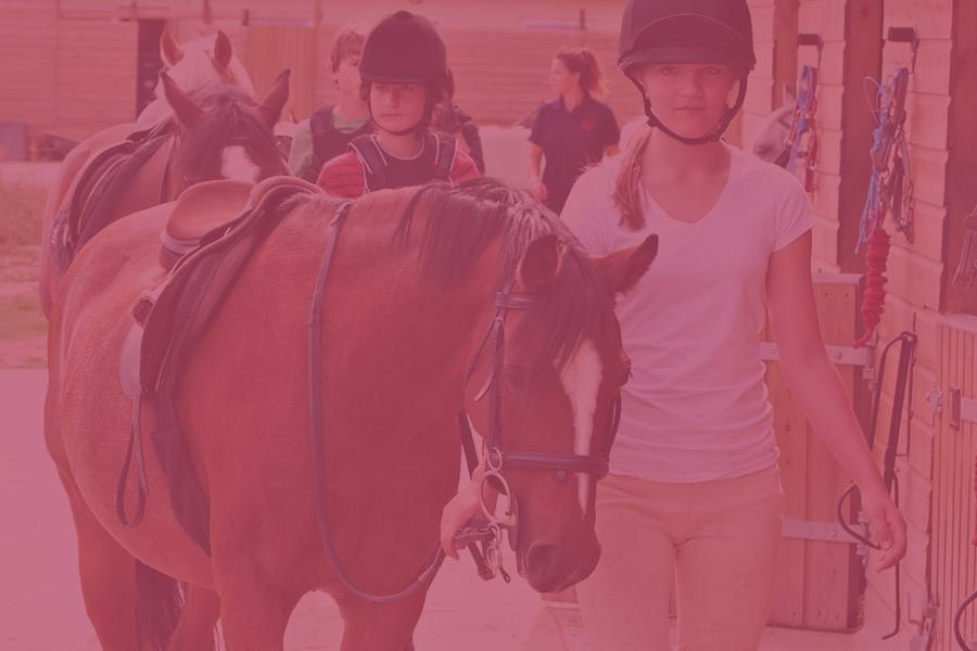 Pony-Week-900x600-pink