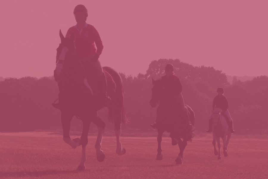 Riding-Courses-900x600-new-pink