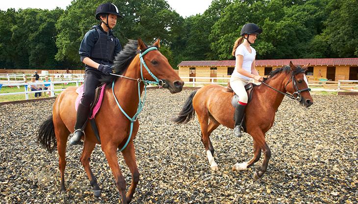 Stag-Lodge-Page-Bottom-Pony-Week