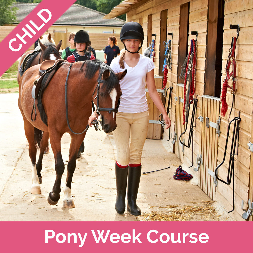 Stag-Lodge-Shopify-Voucher-Pics-Pony-Week