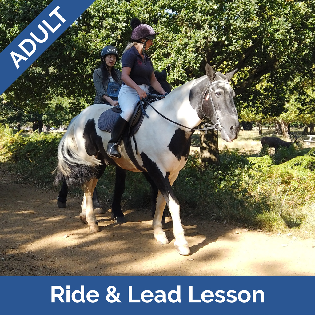 Stag-Lodge-Website-Buy-Pics-Adult-Ride-Lead