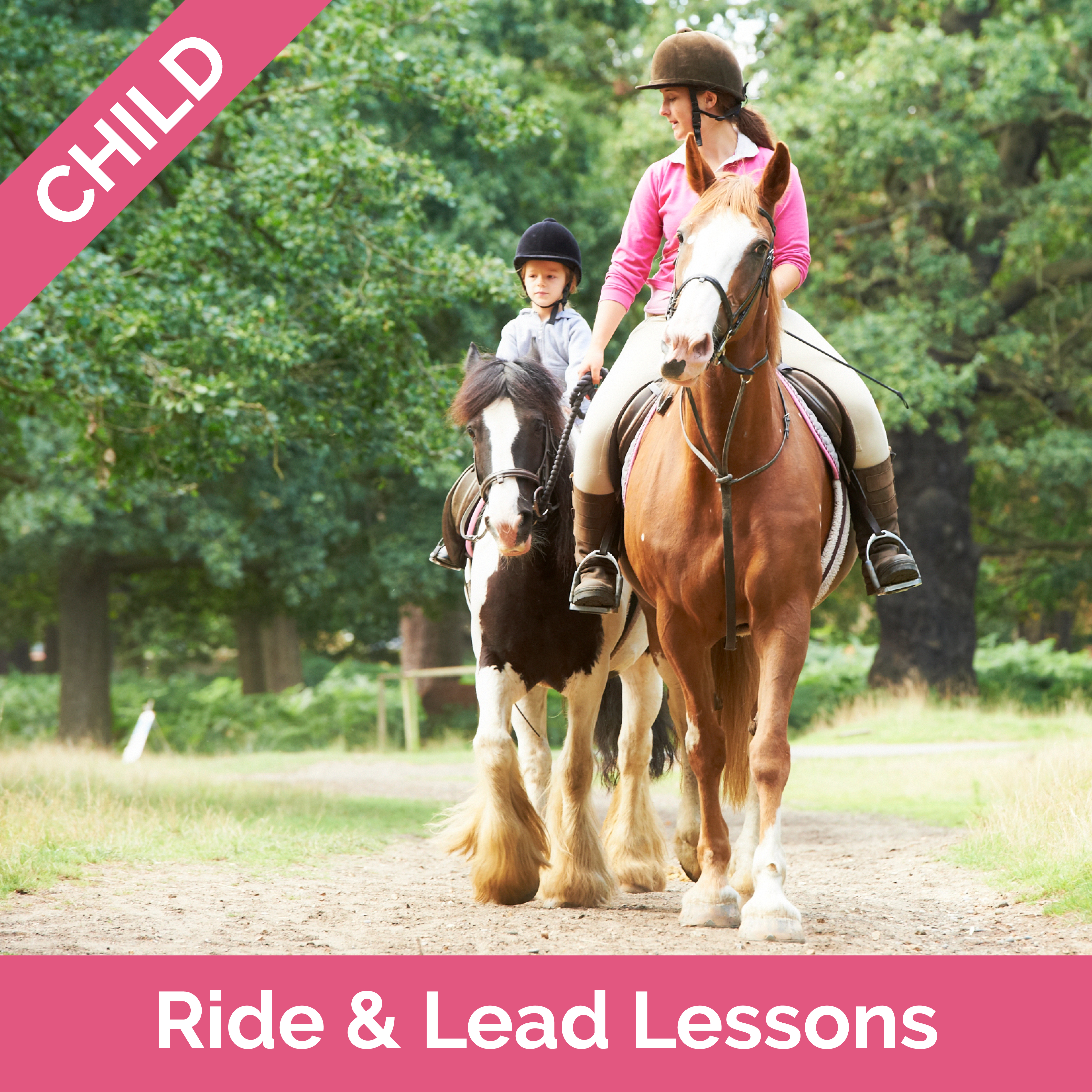 Stag-Lodge-Website-Buy-Pics-Child-Ride-&-Lead