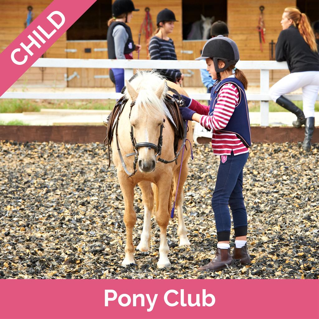 Stag-Lodge-Website-Buy-Pics-Pony-Club